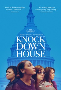 Knock down the House poster